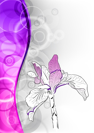 purple flower on the abstract background Stock Vector - 9663550