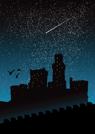 silhouette of castle under the night sky Stock Vector - 9933420