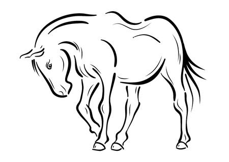 draft: Horse on the white background Illustration
