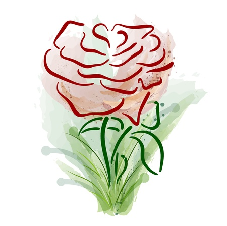abstract rose on the white Vector