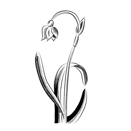 spring snowflake isolated on the white Vector
