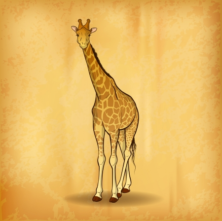 zoo animals: giraffe on the old paper Illustration