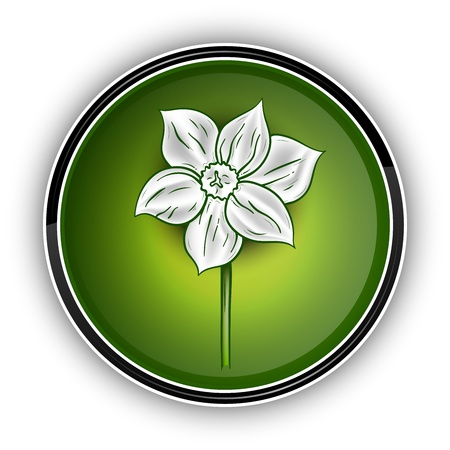 white flower on the green symbol Vector