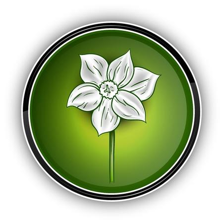 white flower on the green symbol Stock Vector - 11844941
