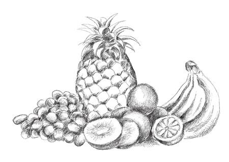 morceau de fruit isolé sur le blanc Vecteurs