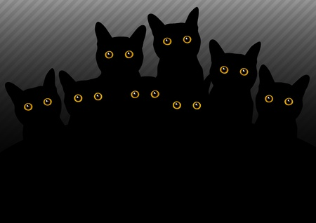 witch face: group of cats in the dark