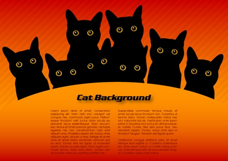 cat cartoon: black cats on the red background