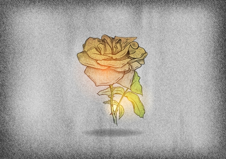 rose ont the grey texture background Vector