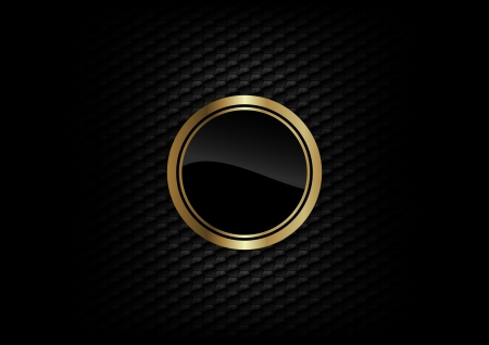 gold round on the dark background Vector