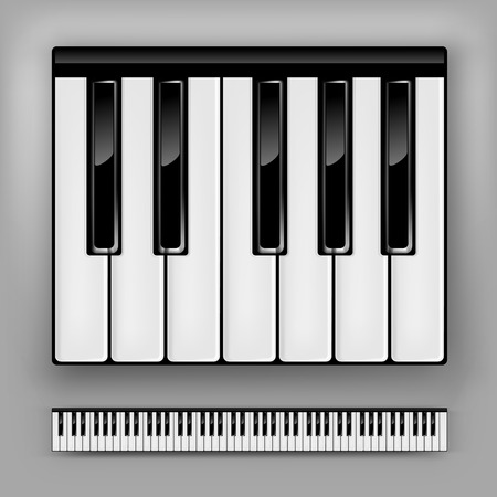 keyboard keys: Vector piano keyboard. One octave or full 88 keys.
