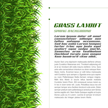Spring grass as vector layout page.
