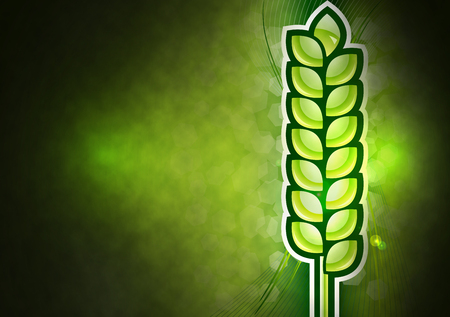 Green corn on the abstract agricultural background.