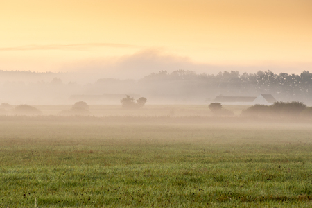 Fog in the landscape. Morning haze by the sunrise.