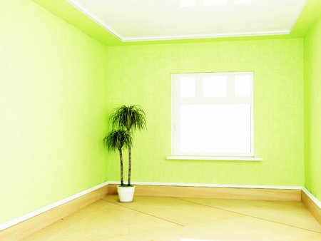 Interior design scene with a plant in the empty green room photo