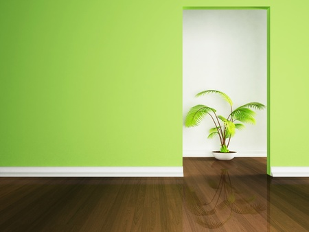 beautiful plant on the floor in an empty room photo