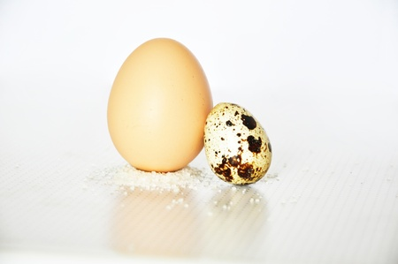 ovoid: two eggs, standing on the salt
