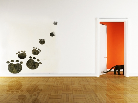 cat open: Interior design scene with a decor on the wall and a door