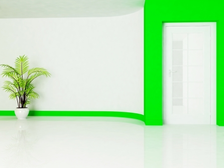 empty room with a door and a plant, minimalism photo