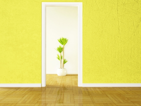 A green plant in the empty room photo