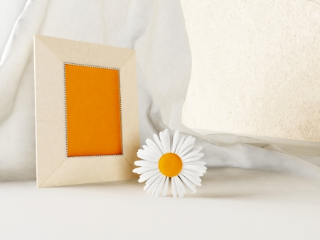 beautiful composition with a flower and a frame for a photo Stock Photo - 14181656