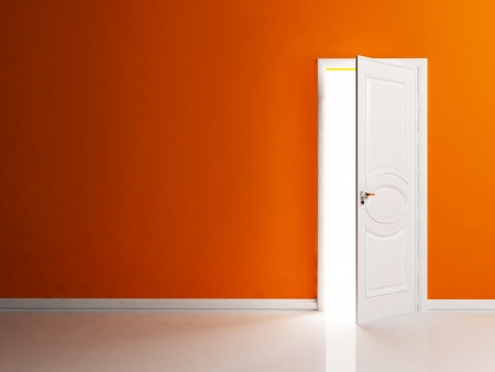 front entry: White opened door in the empty room, rendering