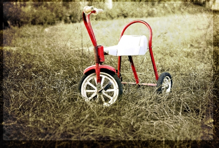 tricycle: old childrens bike in contrast color
