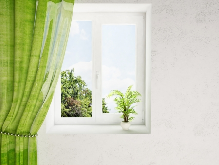 living room window: interior design scene with a plant on the window