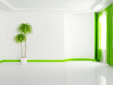 Interior design scene with the plant in the empty room photo