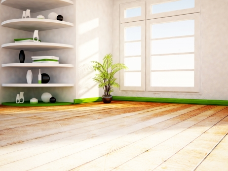 many shelves in the room and a green plant
