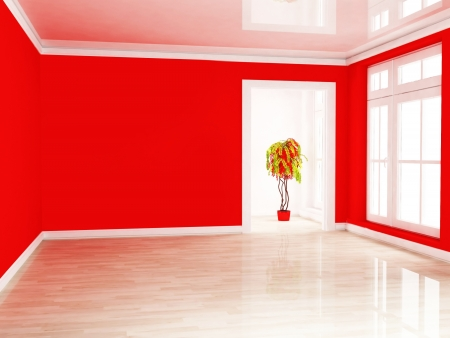 a green and red plant in the empty room near a window, rendering