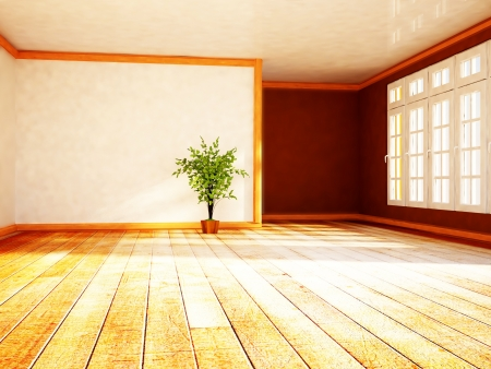 a green plant in the shiny room near the window Stock Photo - 18233435
