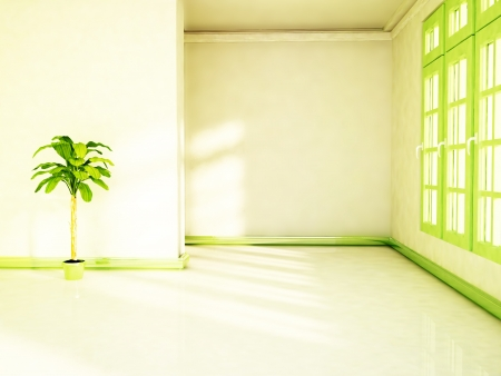 a green plant in the shiny room Stock Photo - 18233464