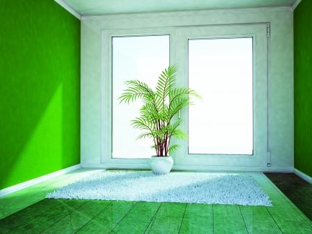 window shade: a green plant in the empty room near window Stock Photo