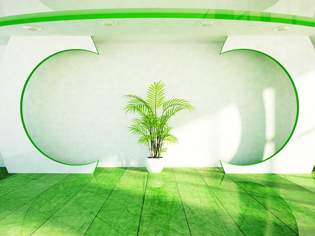 celling: a green plant is on the room