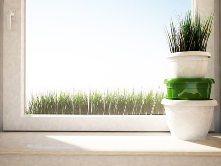 the vases with the grass on the windowsill photo