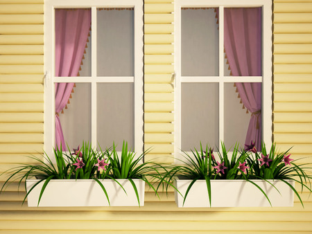 flower boxes: two windows on the house and the plants