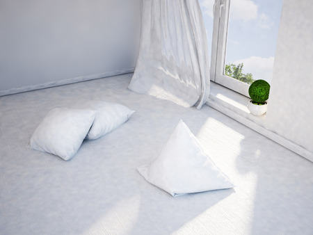 floor plant: the cushions are scattered on the floor, 3d rendering