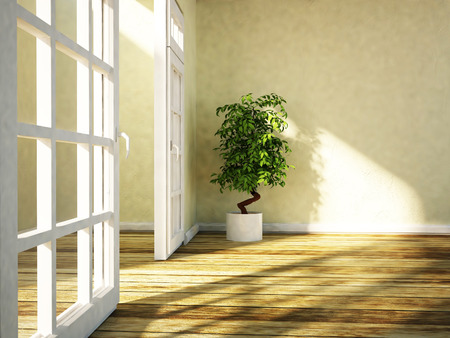 view of a wooden doorway: green plant is standing near the doorway, 3d rendering Stock Photo