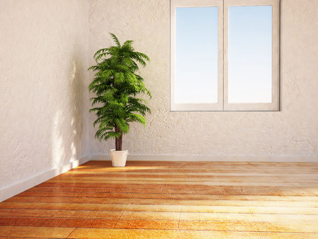 vase plaster: green plant near the window,3d rendering Stock Photo