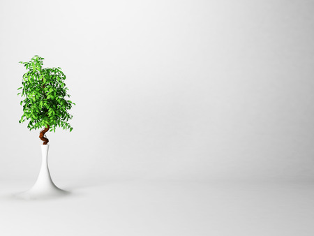 green plant in the vase, 3d rendering Stock Photo