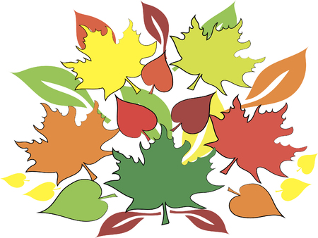 many colored: many colored leaves on white background