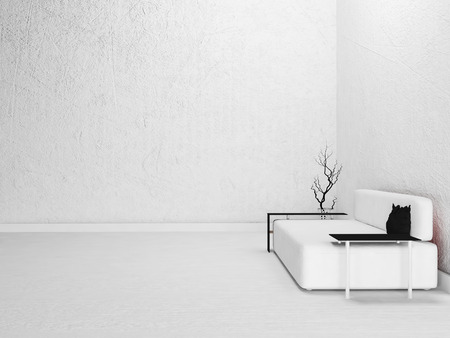 room in white color, sova and a vase, 3d rendering