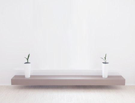 wall decoration: two vases on the shelf, 3d rendering (corrected)