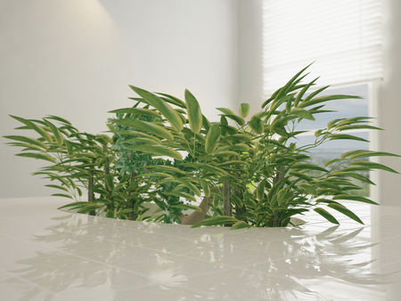 Plants in a niche countertops, 3d rendering