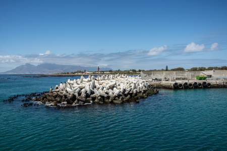 robben island: Dolosse at the entrance to the Robben Island harbour with Table Mountain in the background