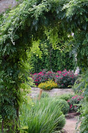 arbor: Garden Arbor