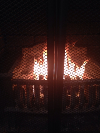 grate: Fireplace with one log and grate in front