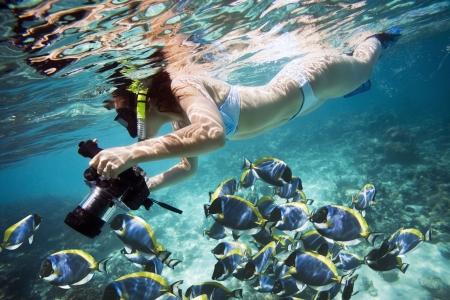 scuba woman: Underwater Life