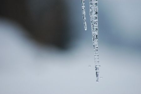 thawing: A thawing clear ice icicle