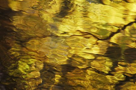 abstrakt: Water surface in wood in autumn